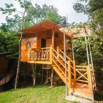 Khám phá những bungalow trên cây độc đáo tại Phú Quốc