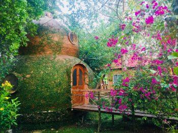 Những căn nhà gần gũi với thiên nhiên